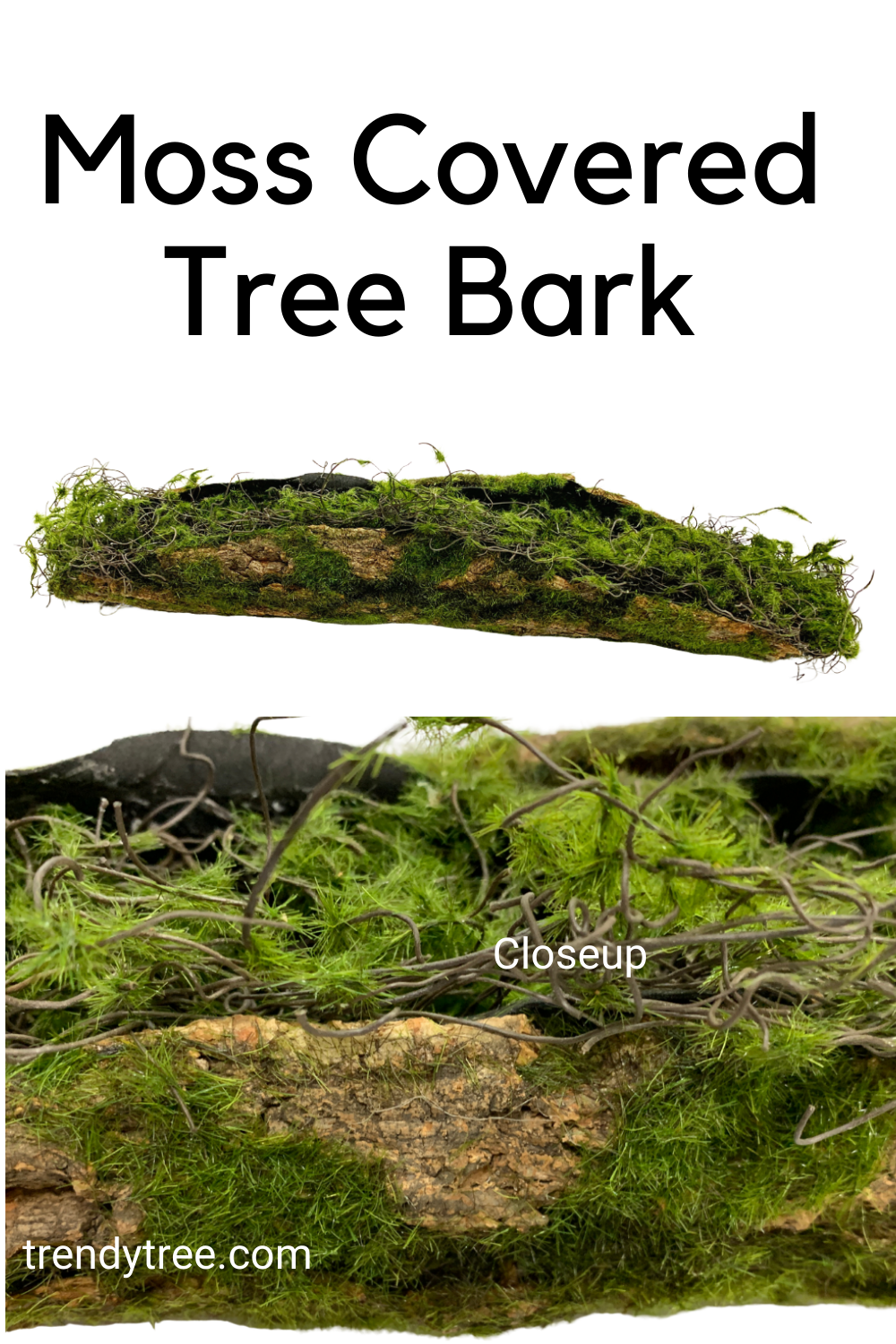 Moss Covered Tree Bark Use as a base for floral arrangements with succulents