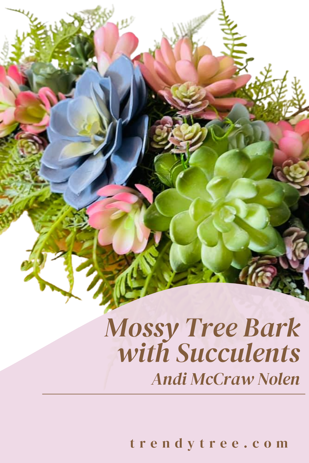 moss covered tree bark with succulents