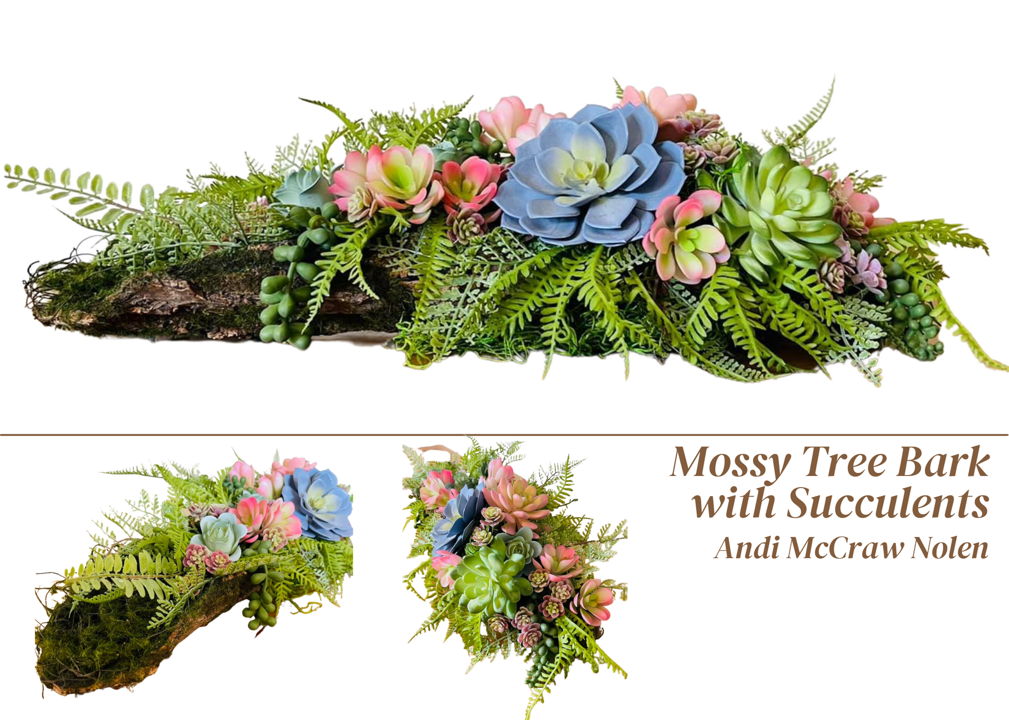 moss tree bark with succulents