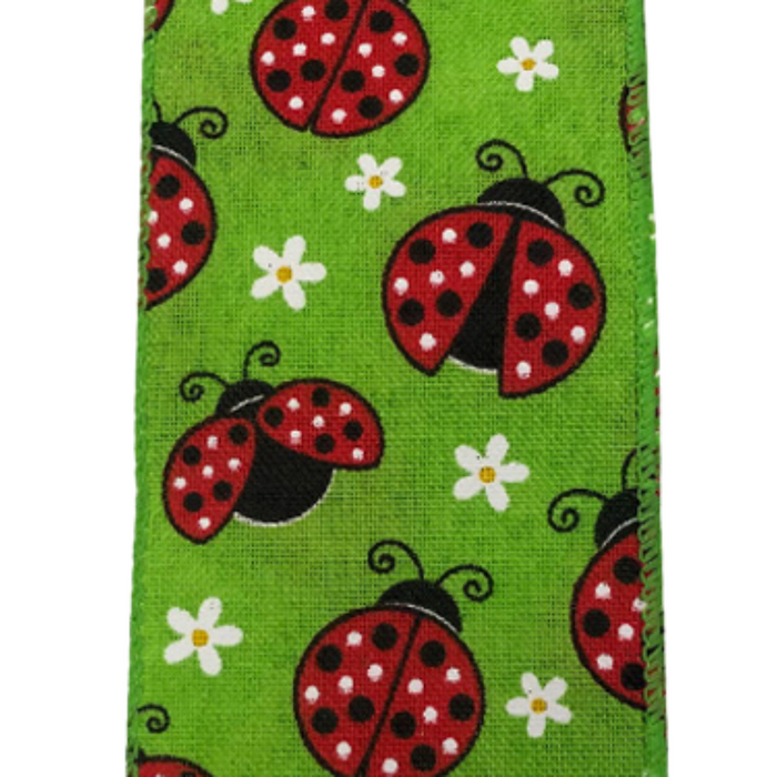 "2.5"" Lime Lady Bug Daisy Ribbon 41027-40-09"