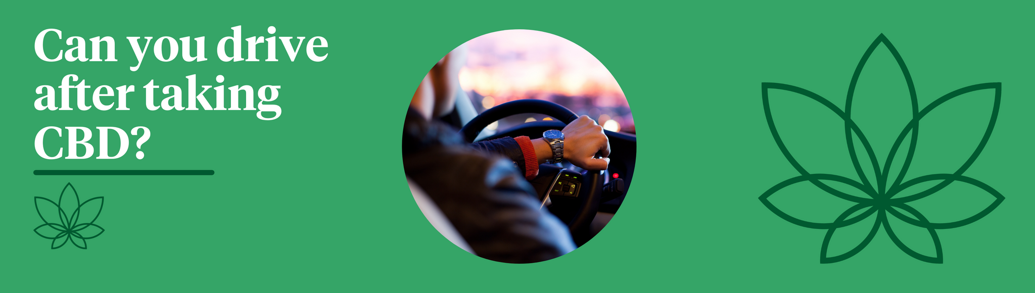 A green background with the Supreme CBD logo to the right of the image with a circular image in the centre with a person driving, holding the steering wheel with one hand.