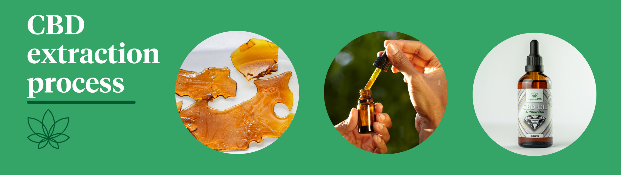 """A green background with the Supreme CBD logo to the right with white text saying """"CBD extraction process"""" with three circular images showcasing the process of extracting CBD."""