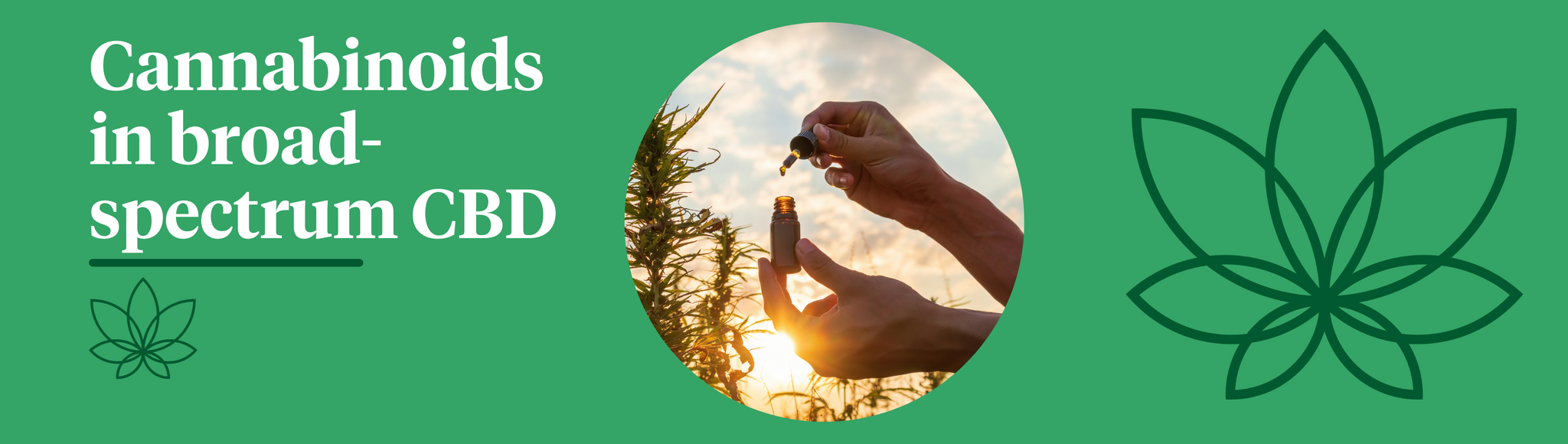 A green background with the Supreme CBD logo to the right and a bottle of CBD oil in the centre to showcase what cannabinoids are in broad-spectrum CBD.