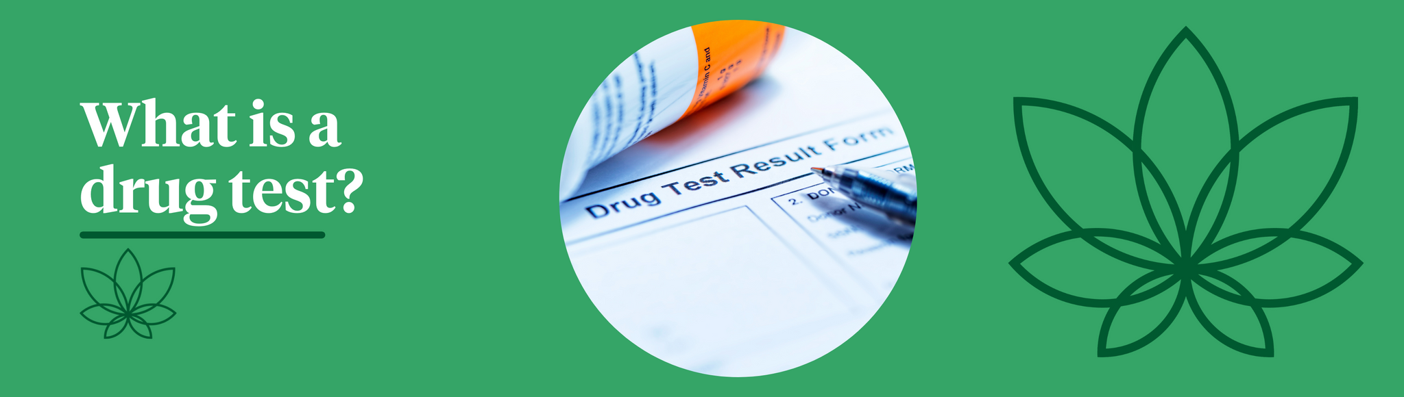 A green background with the Supreme CBD logo to the right alongside a drug test form in the centre of the image to demonstrate what is a drug test?