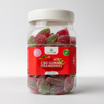 Supreme CBD Large Gummy Strawberries (10MG)