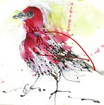 Water media painting, Little Red Bird Rose Colored Finch by Christine Alfery