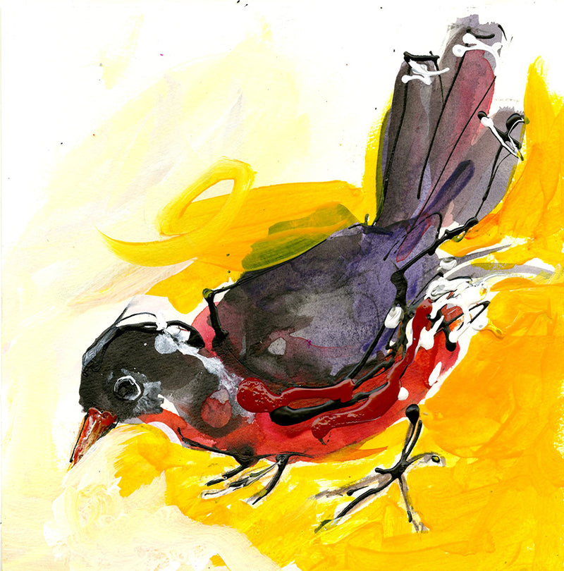 Water media painting, Robin at My Feeder  by Christine Alfery
