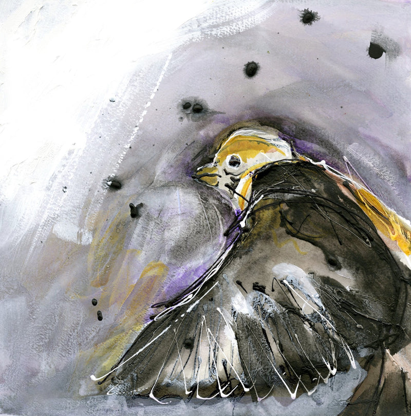 Water media painting, Yellow Headed Black Bird by Christine Alfery