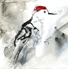 Water media painting, Woodpecker by Christine Alfery