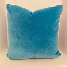Load image into Gallery viewer, Velvet Pillow multiple colors available
