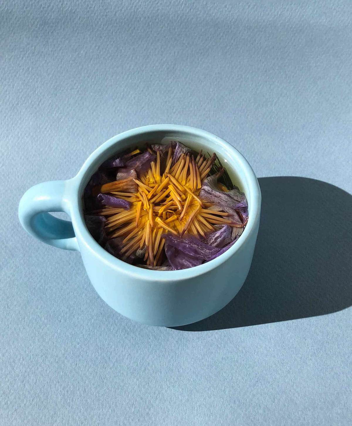 Blue Lotus Flower Tea Infusion