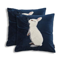 2PCS Luxury Velvet Throw Pillow Covers Decorative Cute Dogs Square Cushion Cover for Sofa Couch Modern Bunny Pillowcases 18x18 Inch