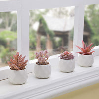 Viverie Faux Succulents in White Ceramic Pots for Desk, Office, Living Room, and Home Decoration - Fake Plants Included (Set of 4 Artificial Succulents)