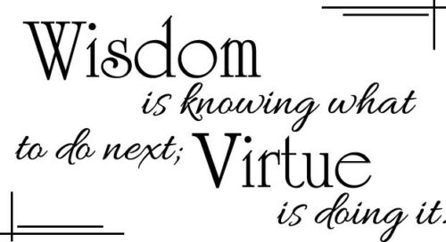 Wisdom is knowing Vinyl Wall Decor Decal Quote Inspiration Elegant Adorable