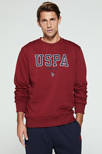 U.S. Polo Assn. Graphic Crew Sweatshirt