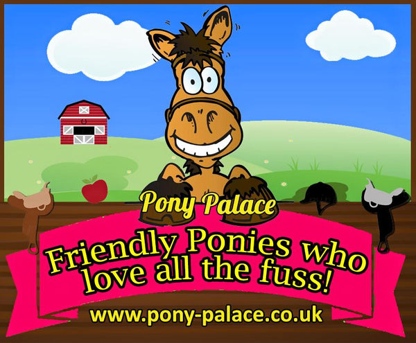 friendly ponies who love all the fuss