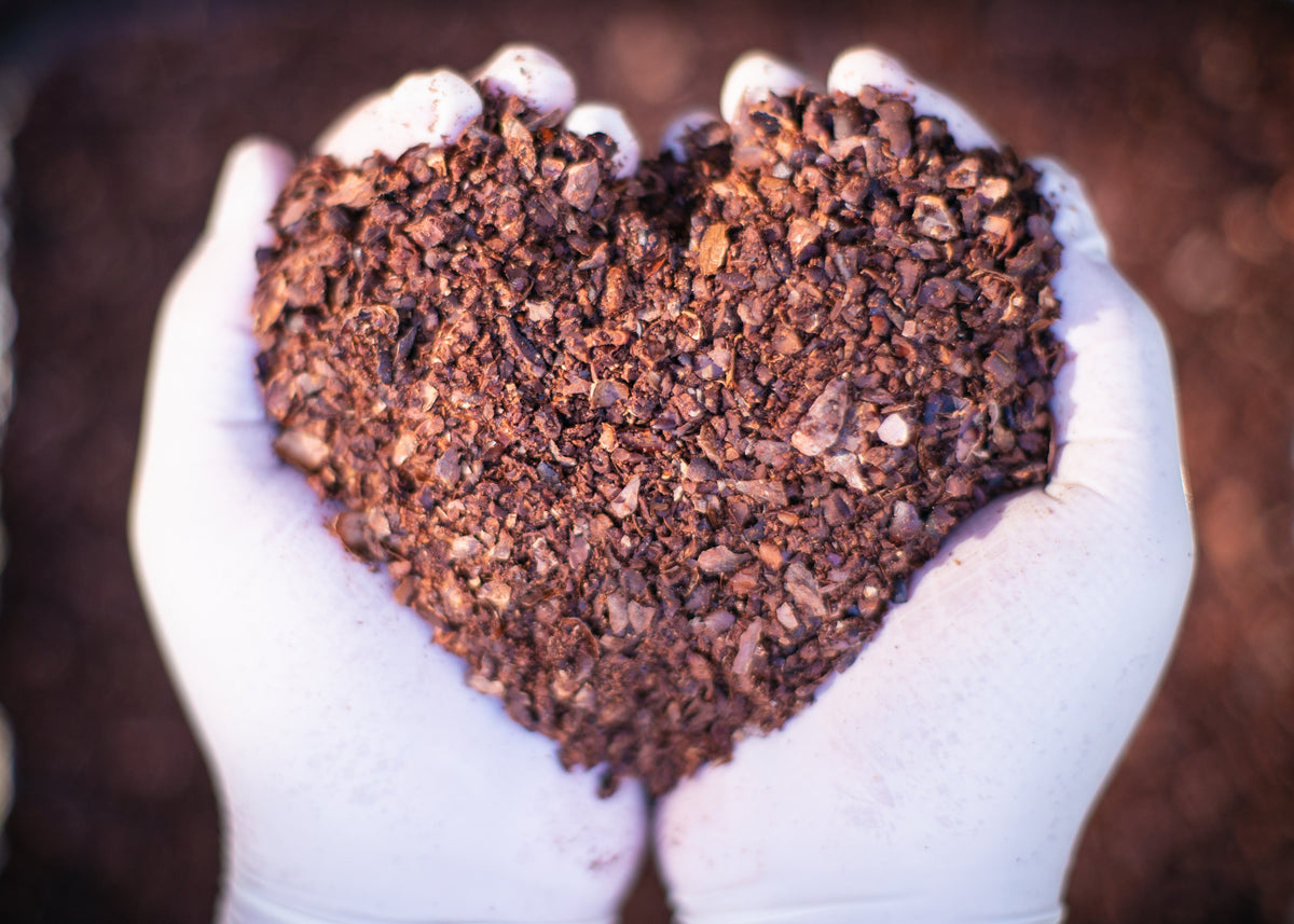 heart of cocoa cacao nibs for the best naturally fruity natural real dark chocolate 75% handmade artisanal in toronto canada beyond fair trade