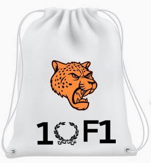 Prosperi Backpack
