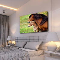 Horses Baby Foal Cute Nursery Canvas Wall Cool 3D Art Mounted Framed Room C617