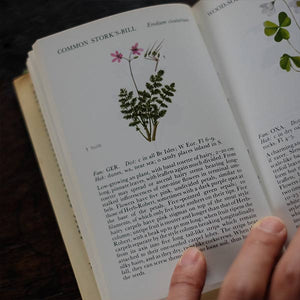 The Observer's Book of WILD FLOWERS