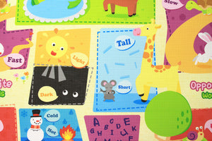 BABYCARE Playmat- Let's Go Camping
