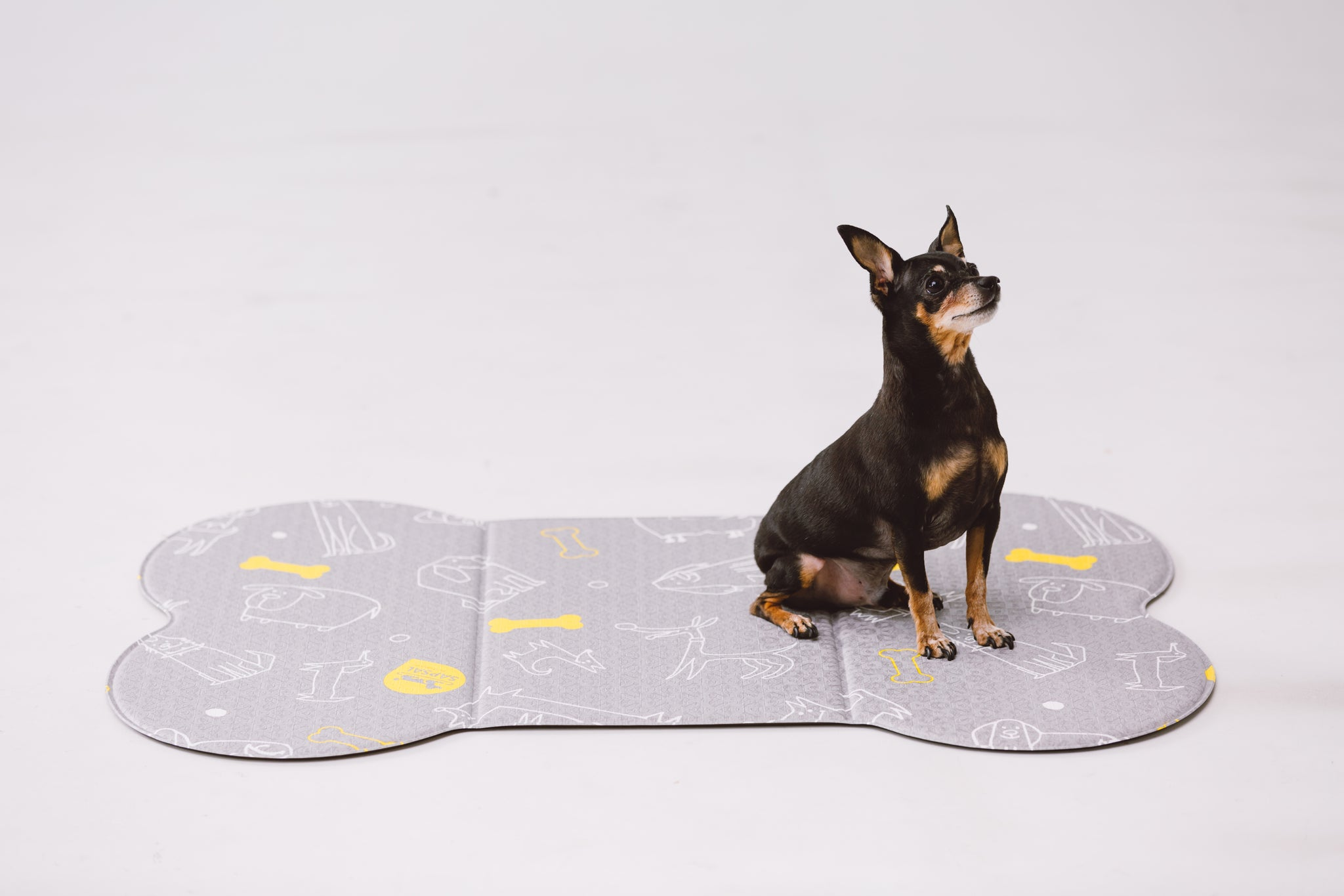SAPSAL Pet mat-Myfriends Grey (Small)