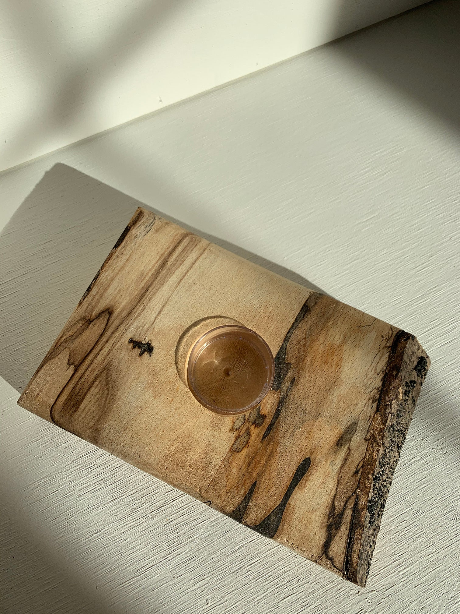 The Turning Point Live Edge Candle Holder (Birch)