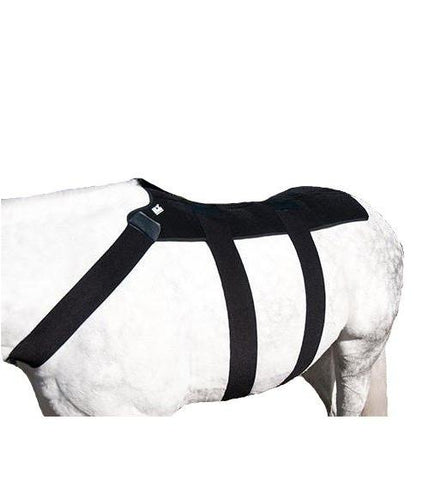 ICE HORSE™ Back Blanket