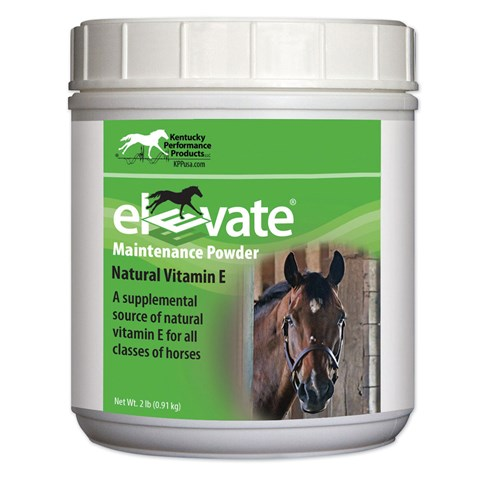 Elevate Maintenance Powder 2 lb.