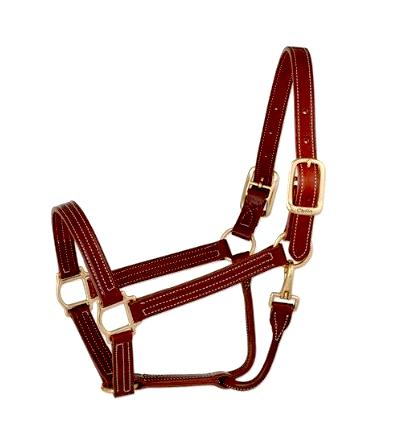 Halter, Leather and Brass