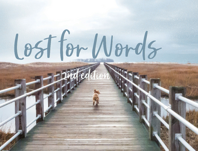 Pet Sympathy Cards - Veterinarians Lost For Words