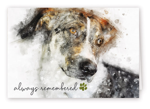 Always Remembered Series 1 - Dog