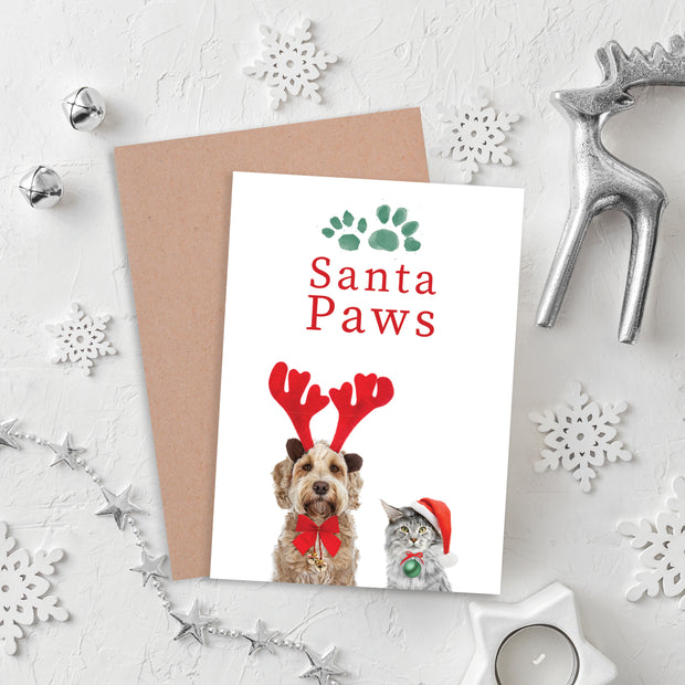 Blank Christmas Card - Santa Paws
