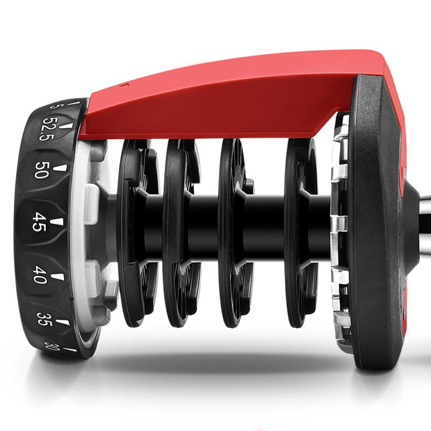 Adjustable Dumbbell 5-52.5lbs Fitness Workouts Dumbbells tone your strength and build your muscles New - Wicked Flex