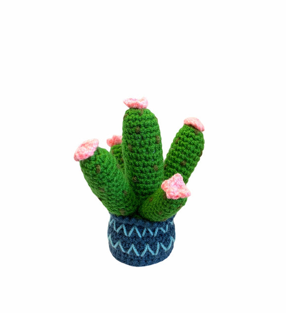 Prickly Pear Baby Rattle