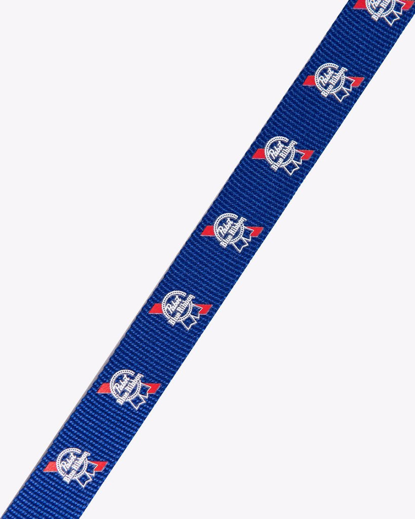 PBR Ribbon Dog Leash