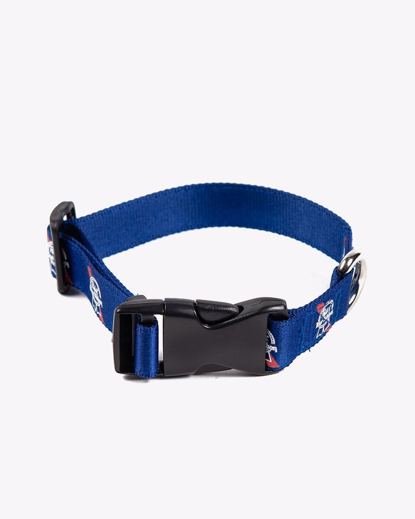PBR Ribbon Dog Collar