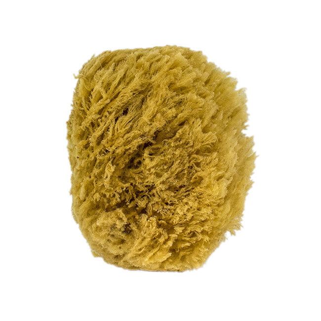 All-natural deep sea body bath sponge by Toronto's Urban Spa is super-sudsing and sustainably harvested. You can find this deep sea beauty in our gift baskets, or add it to your cart when customizing your own gift basket right on our site!