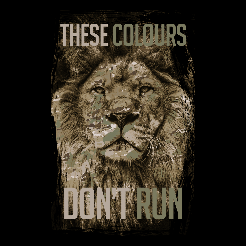 These Colours Don't Run T Shirt
