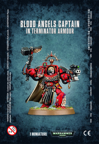 Blood Angels Captain: Terminator Armour