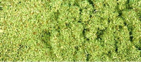GM101   Scatter - Meadow Green (50g)