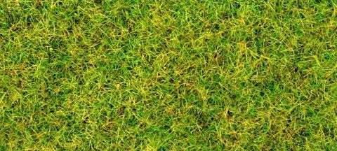 GM170 Static Grass/Flock - Spring grass 30g