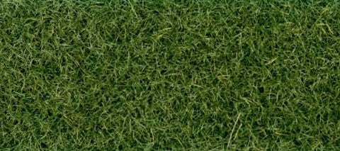 GM172 Static Grass/Flock - Moorland grass 30g