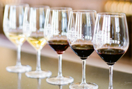 Wine Tasting for Beginners - Online - FREE