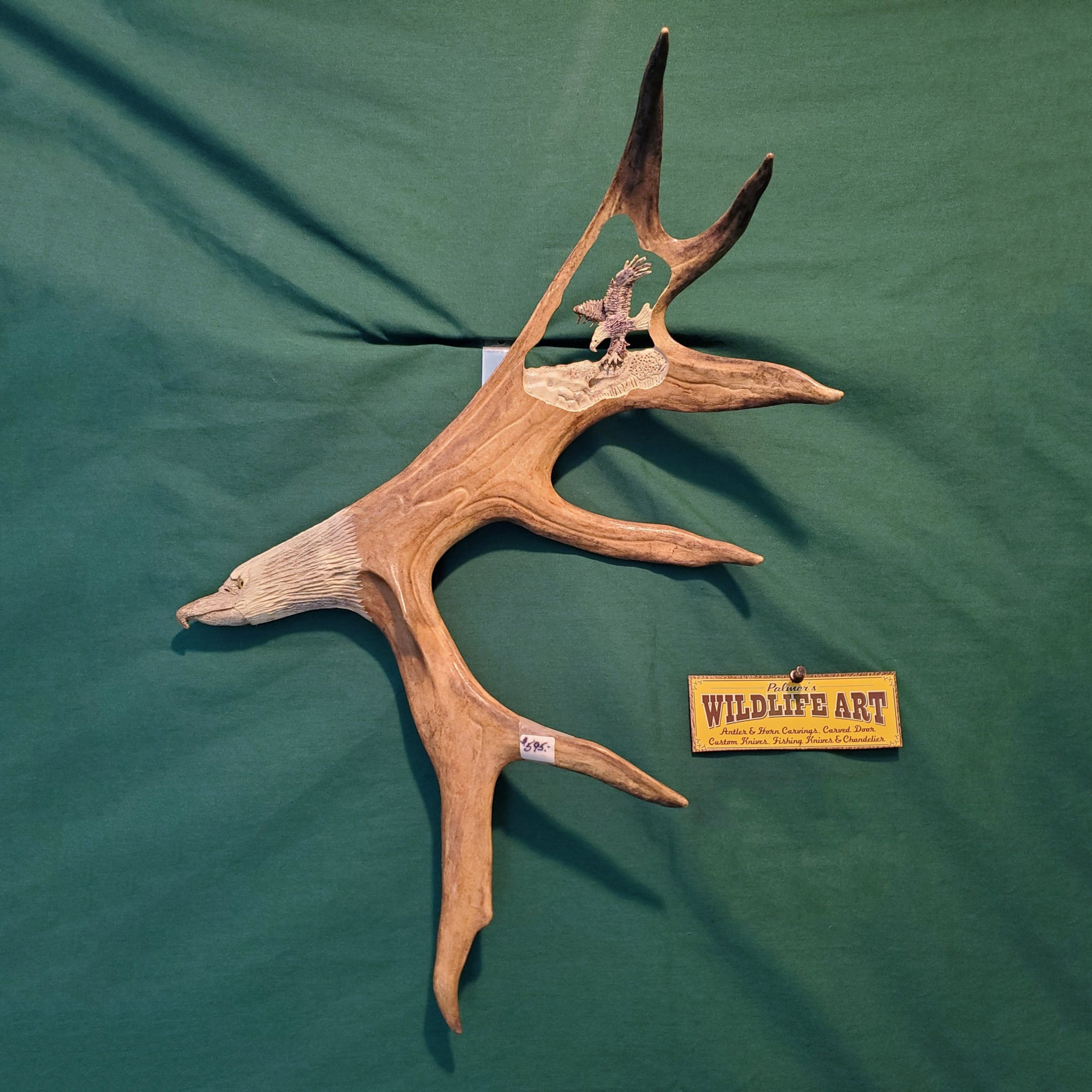 Caribou Antler - Eagles