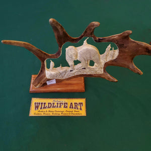 Caribou Antler - Grizzly Bear