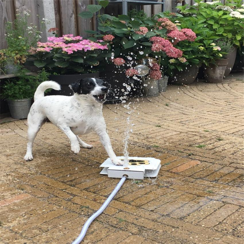 Doggie Water Fountain Sprinkler