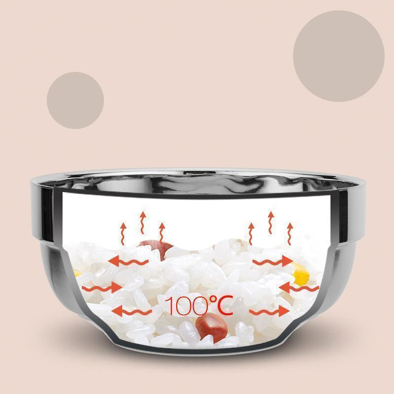 Double Insulated Stainless Steel Bowl