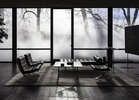 Richard Barnes, Interior View With Mies archival inkjet print on archival substrate, framed in black with glass 36 X 50 in.