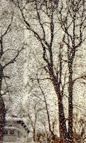 WENDI SCHNEIDER, AS THE SNOW MELTS, 2020 pigment ink on vellum over white gold leaf 8.5 x 11 inches